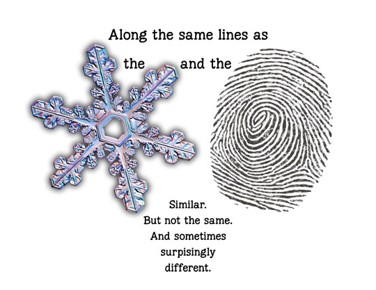 snowflake,thumbprint,fingerprint,life-is-like,same-but-different