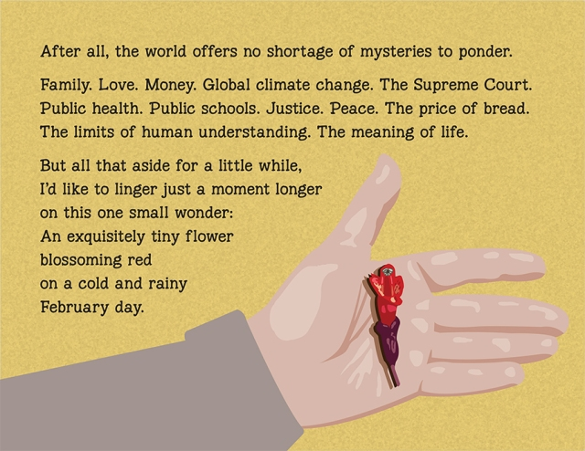 small wonder-10